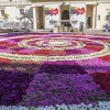 Valletta Green Festival, un'esplosione di colori nel cuore di Malta