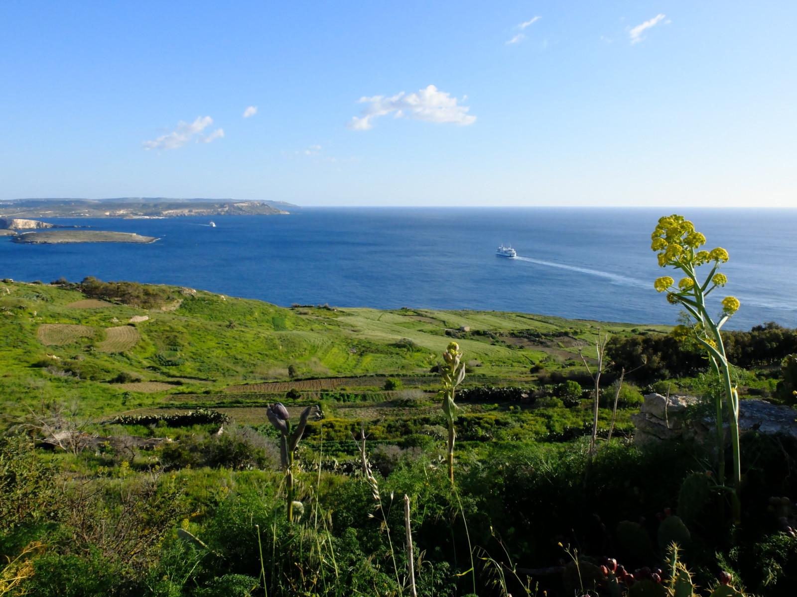 BeBorghi_Malta_10